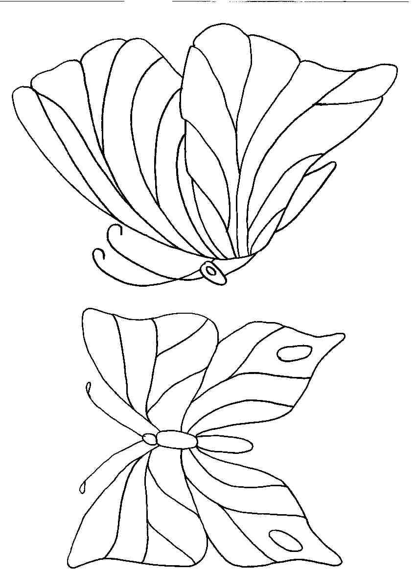 Schmetterlinge. (51937 byte)